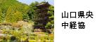 山口県央中経協